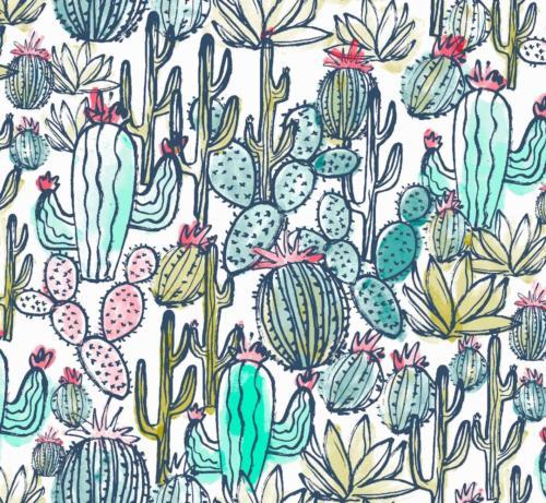 Cactus Blue / Cactus Azul