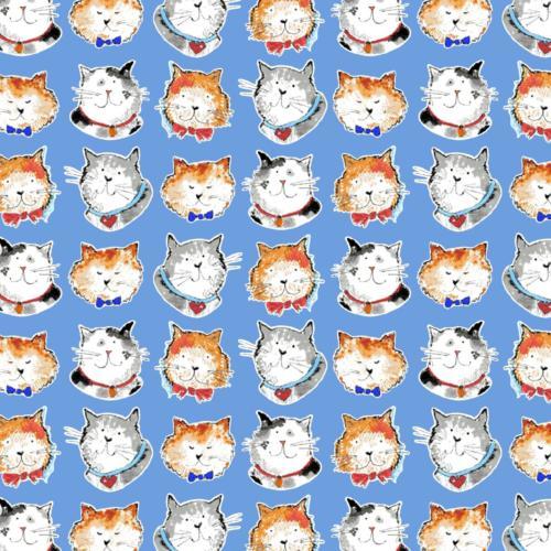 Cats Blue / Gatitos Azul