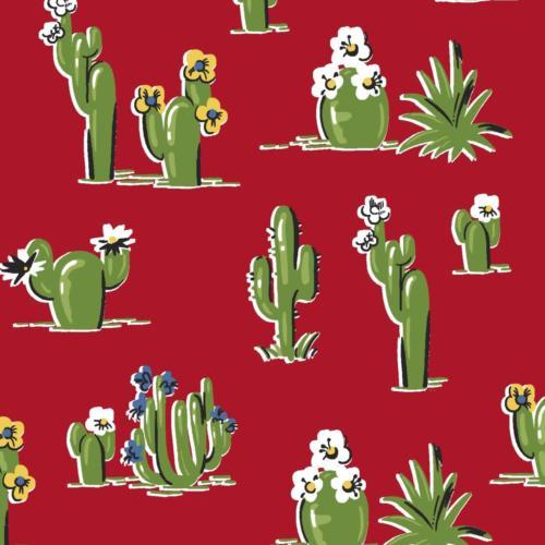 Red Cactus / Cactus Rojo